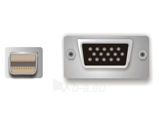 Delock adapteris Displayport mini(M) -> VGA(F) 18cm Paveikslėlis 2 iš 2 250255081362