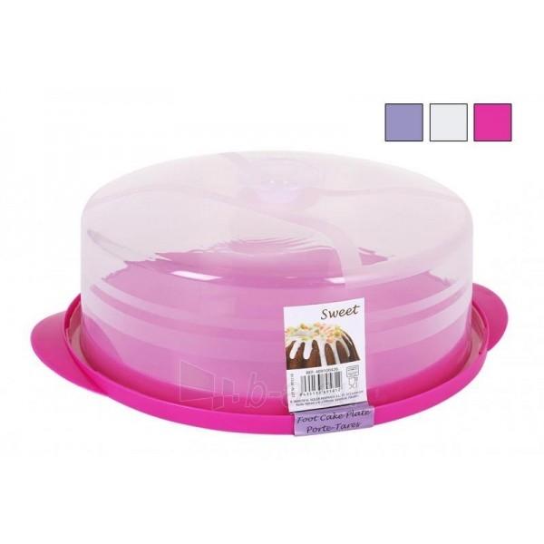 Dėžė tortui plast. 34.5*12.5cm Paveikslėlis 1 iš 1 310820061495