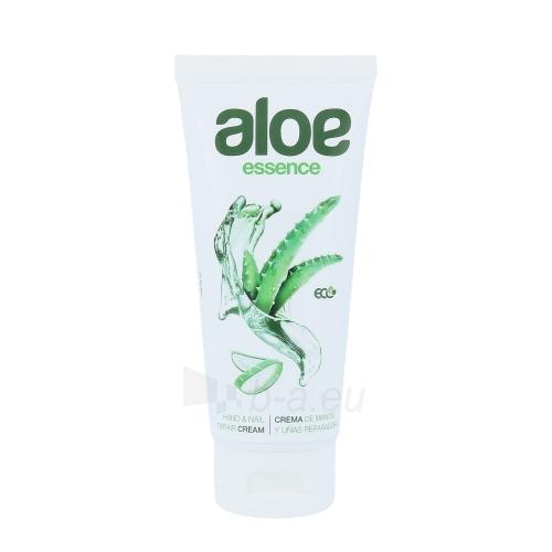 Diet Esthetic Aloe Vera Hand & Nail Cream Cosmetic 100ml Paveikslėlis 1 iš 1 250850400167