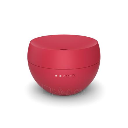 Difuzorius Stadler form Aroma diffusor JASMINE 400 g, Red, Aroma diffusor, 125 m³, 7.2 W Paveikslėlis 1 iš 1 310820225535