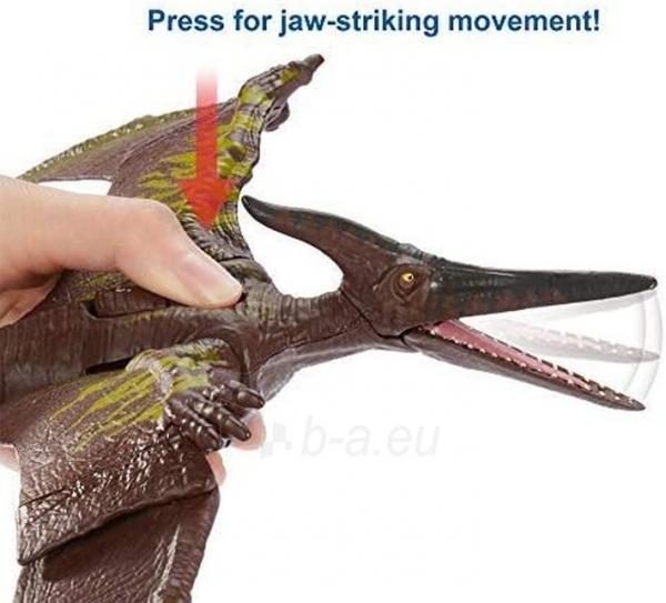 Dinozauras CJN68 / GJN64 Jurassic World Sound Strike Pteranodon MATTEL Paveikslėlis 5 iš 6 310820230666