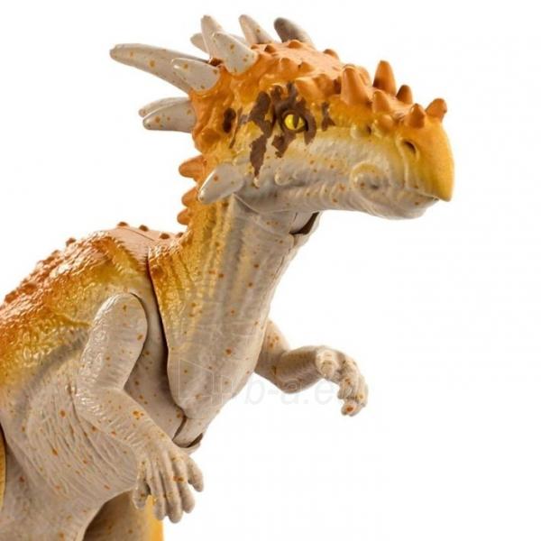 Dinozauras GCR48 / FPF11 Mattel Jurassic World Basic Dinosaur Figures - Dracorex Paveikslėlis 1 iš 6 310820230654