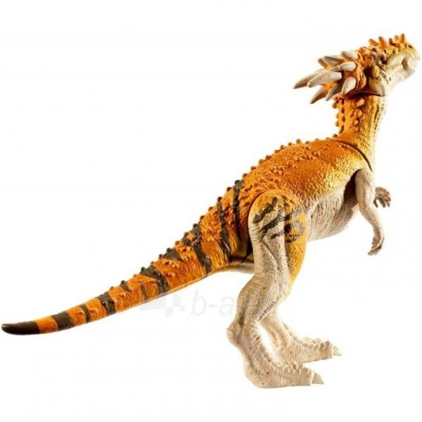Dinozauras GCR48 / FPF11 Mattel Jurassic World Basic Dinosaur Figures - Dracorex Paveikslėlis 3 iš 6 310820230654