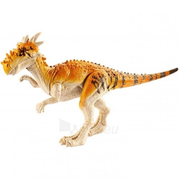 Dinozauras GCR48 / FPF11 Mattel Jurassic World Basic Dinosaur Figures - Dracorex Paveikslėlis 4 iš 6 310820230654