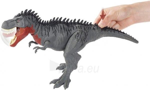 Dinozauras GJP33 / GJP32 Jurassic World Massive Biters Tarbosaurus MATTEL Paveikslėlis 5 iš 6 310820230662