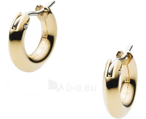 DKNY auksiniai auskarai NJ2224710 Paveikslėlis 1 iš 1 310820024767