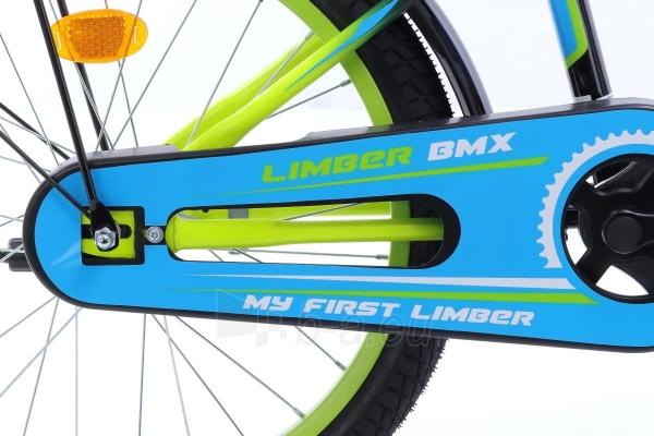 Velosipēds Monteria Limber 20 black-green-blue Paveikslėlis 5 iš 7 310820250849