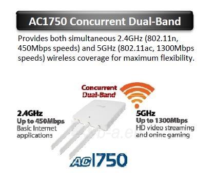 Edimax Long Range AC1750 802.11ac 3x3 Dual band wall mount PoE AP, 2x LAN Gbit Paveikslėlis 7 iš 11 250257100331