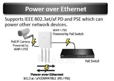 Edimax Long Range AC1750 802.11ac 3x3 Dual band wall mount PoE AP, 2x LAN Gbit Paveikslėlis 4 iš 11 250257100331