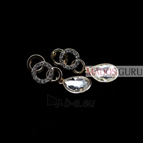 Elegantiški auskarai A100 Paveikslėlis 1 iš 1 30070000092