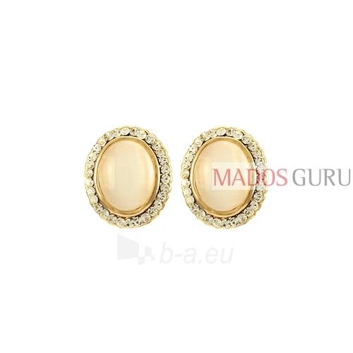 Elegantiški auskarai A1068 Paveikslėlis 1 iš 2 30070002574