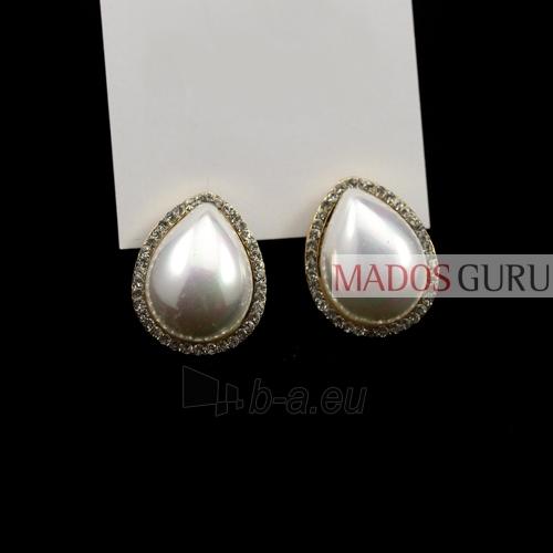 Elegant earrings A109 Paveikslėlis 1 iš 1 30070000094