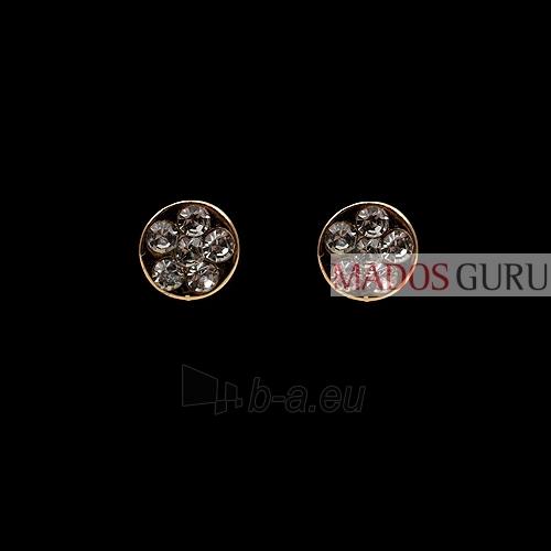 Elegant earrings A178 Paveikslėlis 1 iš 1 30070000463