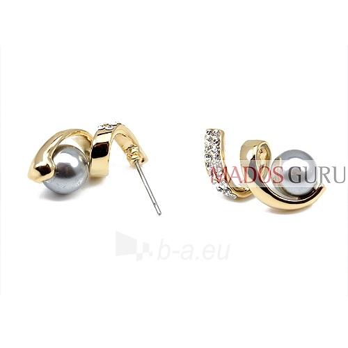 Elegant earrings A227 Paveikslėlis 2 iš 2 30070000464