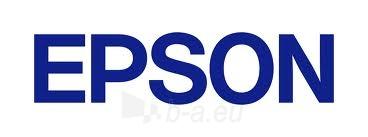 EPSON T6734 YELLOW INK BOTTLE 70ML Paveikslėlis 1 iš 1 250256000808
