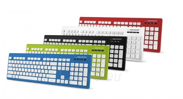 Esperanza EK130K Laidinė, vandeniui atspari USB klaviatūra - SINGAPORE Paveikslėlis 2 iš 2 310820042551