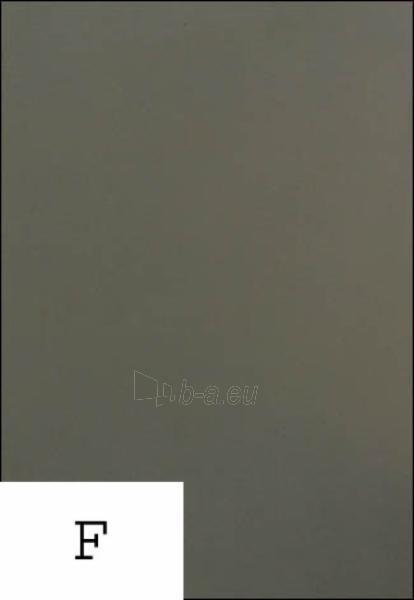 Fanera laminuota drėgmei atspari 2150x4000x21 F/F II pilka (8,6 kv.m.) Paveikslėlis 1 iš 1 310820053586