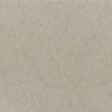 Fonas Lastolite ARCTIC GREY, skirtas CUBELITE 120cm Paveikslėlis 1 iš 1 30025600872