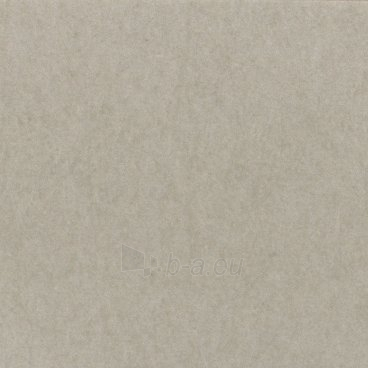 Fonas Lastolite ARCTIC GREY, skirtas CUBELITE 90cm Paveikslėlis 1 iš 1 30025600873