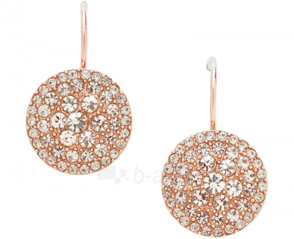 Fossil earrings with Crystals JF00135791 Paveikslėlis 1 iš 2 30070001597