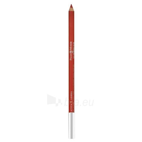Frais Monde Lip Pencil Cosmetic 1,4g Nr.26 Paveikslėlis 1 iš 1 250872300117