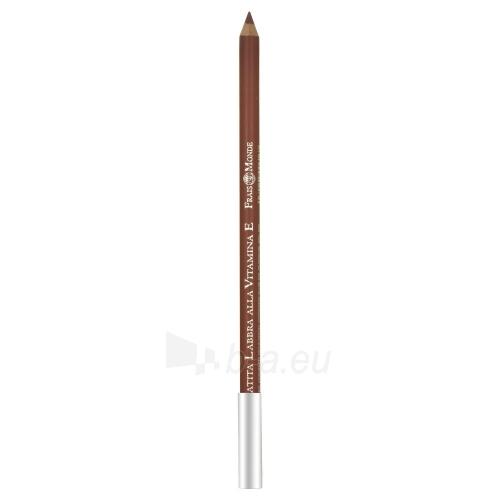 Frais Monde Lip Pencil Vitamin E Cosmetic 1,4g Nr.23 Paveikslėlis 1 iš 1 250872300118