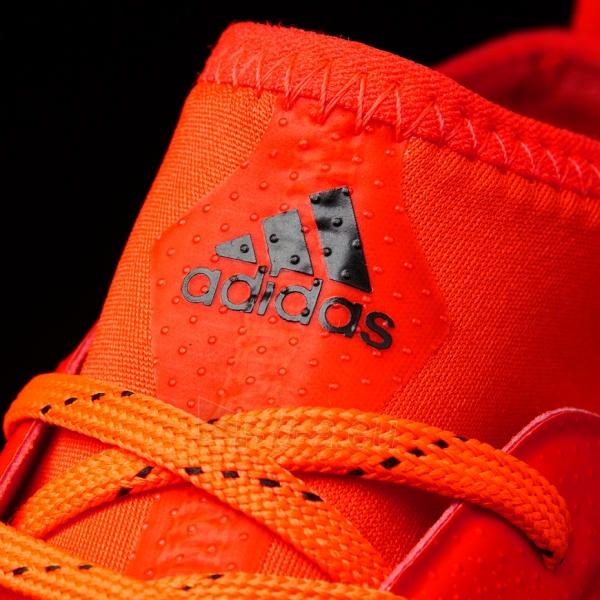 Futbolo bateliai adidas ACE 17.3 FG S77065 Paveikslėlis 6 iš 7 310820141475
