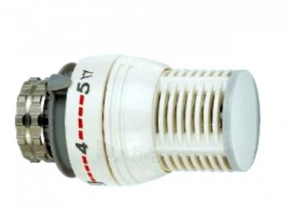 Galva termostatinė 4023 (KLF-2) Paveikslėlis 1 iš 1 270321000009