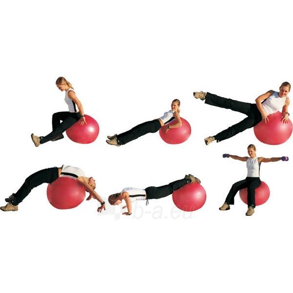 Gimnastikos kamuolys inSPORTline Top Ball 75 cm Paveikslėlis 7 iš 7 250520103041