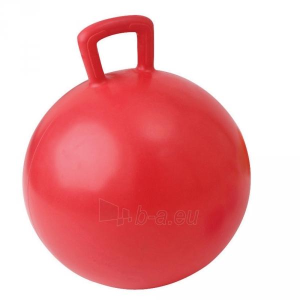 Gimnastikos kamuolys su rankena TREMBLAY 55 cm Paveikslėlis 1 iš 1 310820178929