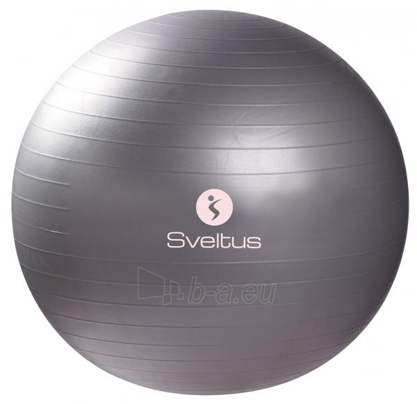 Gimnastikos kamuolys Sveltus 65cm grey Paveikslėlis 1 iš 1 310820027552
