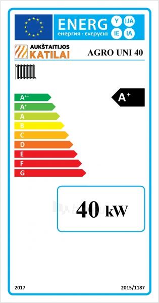 Granulinis katilas 40 kW, komplekte su 40 kWZenono degikliu, 400 l bunkeriu Paveikslėlis 3 iš 6 310820254327