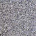 Grindinio trinkelė Prizma 5, pilkos 200x100x50 (BR) Paveikslėlis 3 iš 5 237010000175