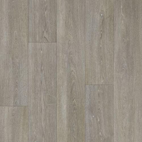 Floor covering PVC B.I.G. PERLA COLUMBIAN OAK 963M , 4 m  Paveikslėlis 1 iš 2 237724000120