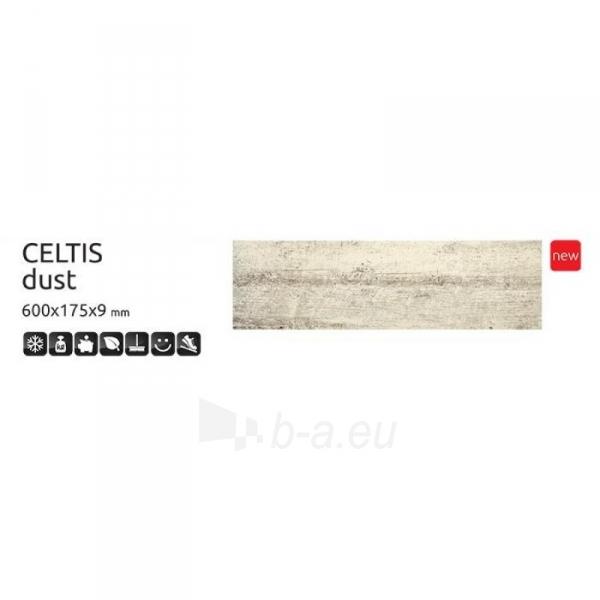 Grindų plytelės CELTIS Dust 600x175x9 mm akmens masė Paveikslėlis 1 iš 1 310820060184