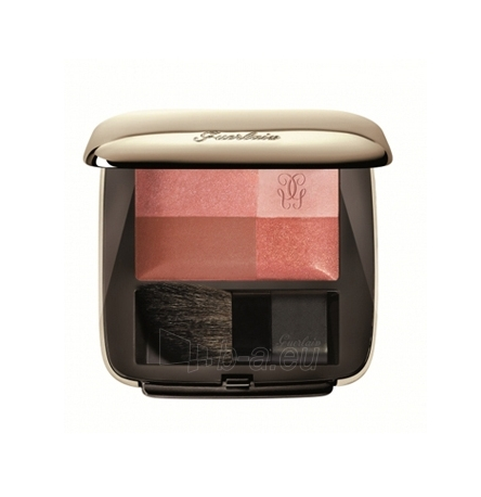 Guerlain Blush 4 Eclats Cosmetic 9g. Paveikslėlis 1 iš 1 250873400038