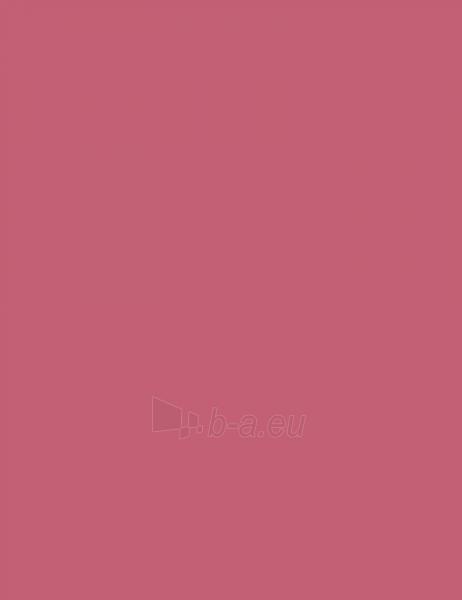 Guerlain The Lip Liner Pivoine Magnifica 0,35g Paveikslėlis 1 iš 3 250872300061