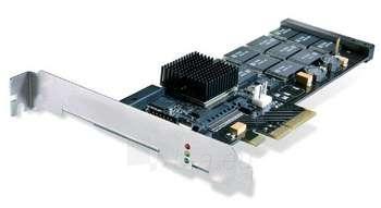IBM 640GB HIGH IOPS SLC DUO ADAPTER Paveikslėlis 1 iš 1 250255400081