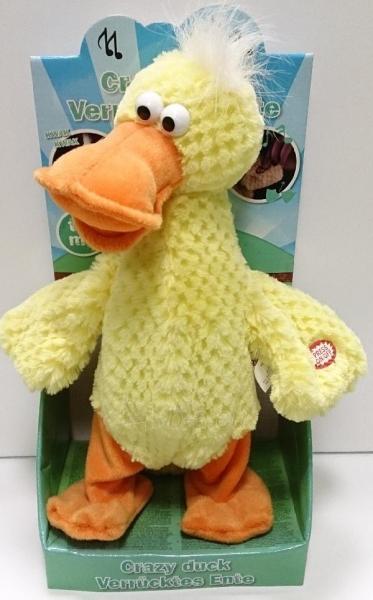 Interaktyvus žaislas - 30cm Chicken 58932 Paveikslėlis 1 iš 1 250710400323