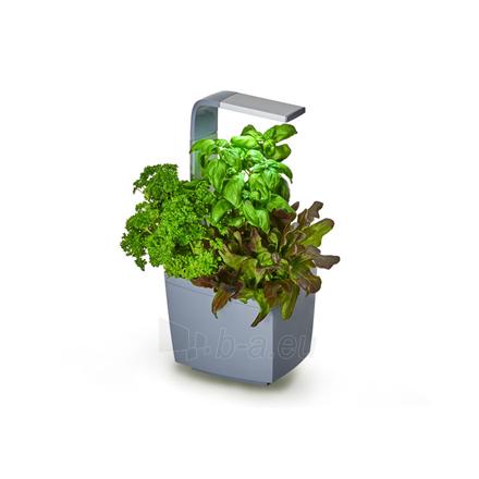 Išmanusis vazonas- daigyklė Tregren Kitchen Garden, T3, Grey, LED, 193x175x440 mm, 6 seed pods pc(s), Wi-Fi controlled, Smartphone remote support Paveikslėlis 1 iš 1 310820191905