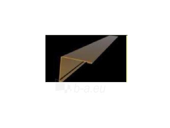 Kamino kampas 100x200 mm, plytų imitacija Paveikslėlis 1 iš 2 310820038725