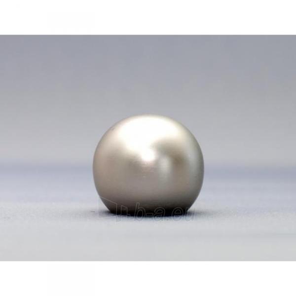 Karnizo užbaigimo detalė KULA 16 mm matinio sidabro Paveikslėlis 1 iš 1 310820062388