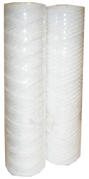 Kasetė filtrui FJPK1 1 mikr. Paveikslėlis 1 iš 2 270910000180
