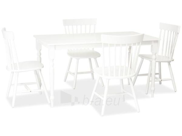 Valgomojo kėdė Alero Paveikslėlis 2 iš 2 250423000328