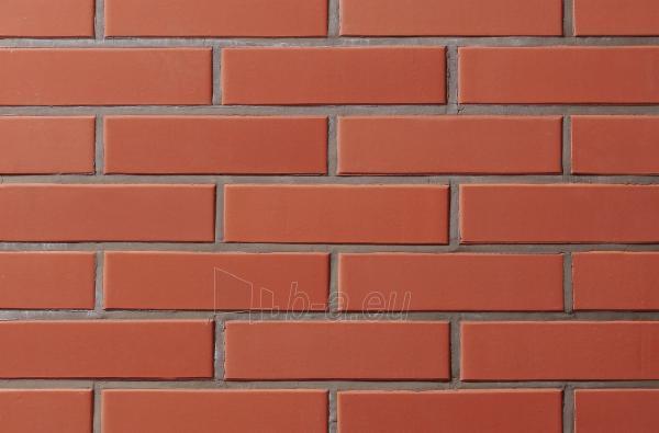 Ceramic brick 1301061 VAT65 red, Antique-Heavy texture Paveikslėlis 1 iš 1 237610200039
