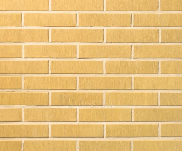 Ceramic brick 1301311 VAT65 TERRA brown, heavy texture Paveikslėlis 1 iš 1 237610200045