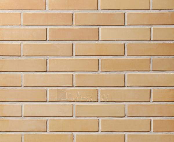 Keraminė fasado apdailos plyta Lode 'Sarmite' 250x85x65 Paveikslėlis 1 iš 1 237610200050
