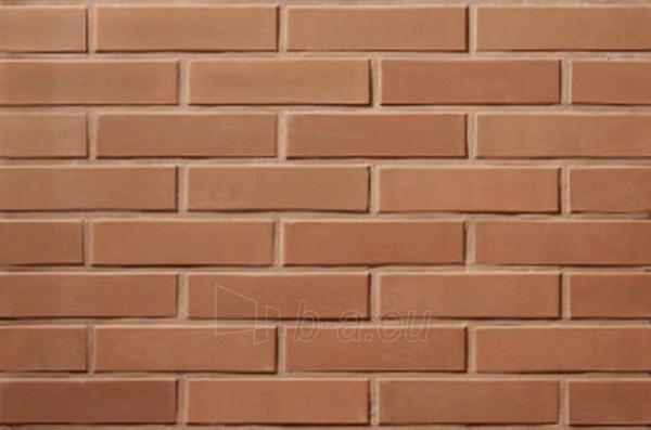 Perforated facing bricks Rudis 11.211100L Paveikslėlis 2 iš 2 237610200004