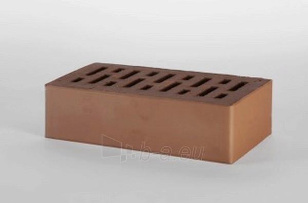 Perforated facing bricks Rudis 11.211100L Paveikslėlis 1 iš 2 237610200004