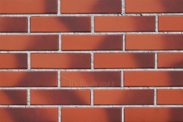 Keraminė pilnavidurė fasado apdailos plyta Lode Cameleo (light angoba) 250x120x65 Paveikslėlis 1 iš 1 310820066039